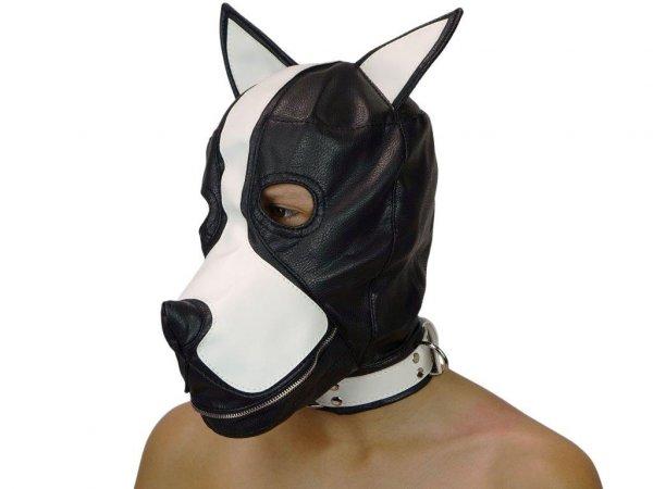 Sklaven-Hundemaske mit Innenknebel und Reißverschluss auf dem M