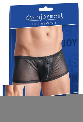 Schwarze Pants aus leicht glänzendem, transparentem Powernet